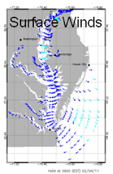 Surface Winds forecast field for the Chesapeake Bay.
