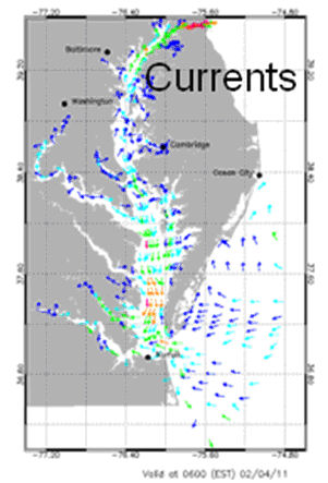 Currents forecast field for the Chesapeake Bay.